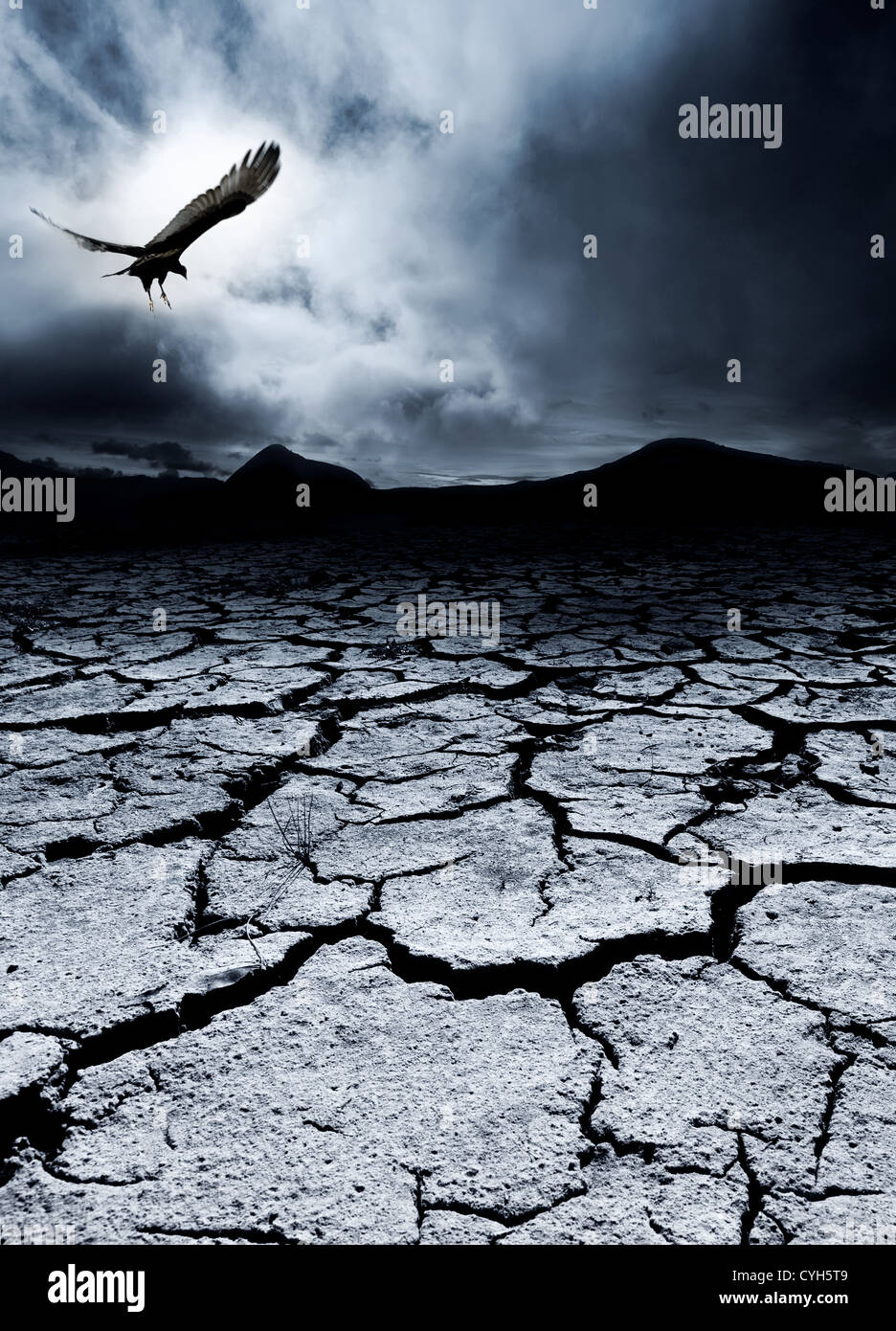 Un pájaro vuela sobre un paisaje desolado Imagen De Stock