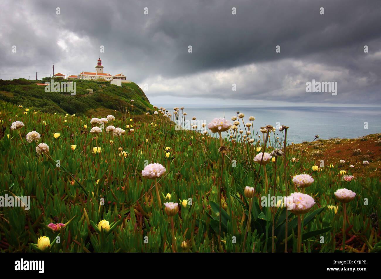 Flores Silvestres Y El Faro De Los Acantilados De Cabo Roca En