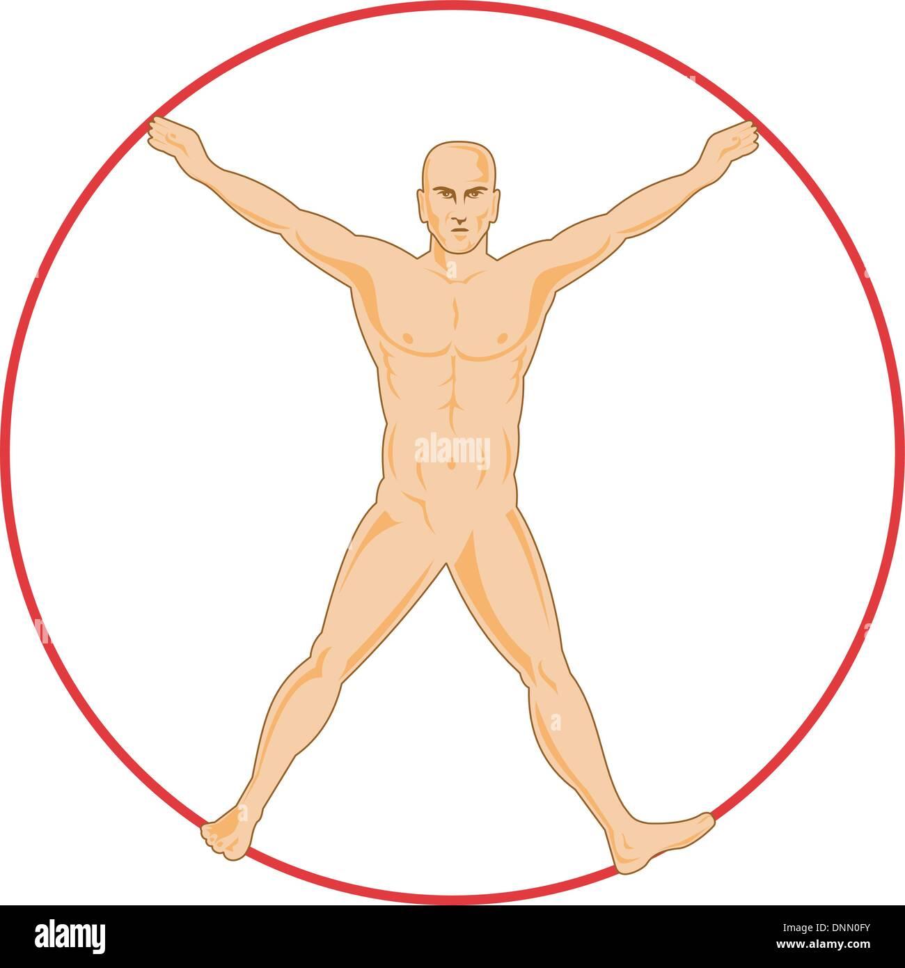 Ilustración de la anatomía humana que muestra un hombre de pie sobre ...