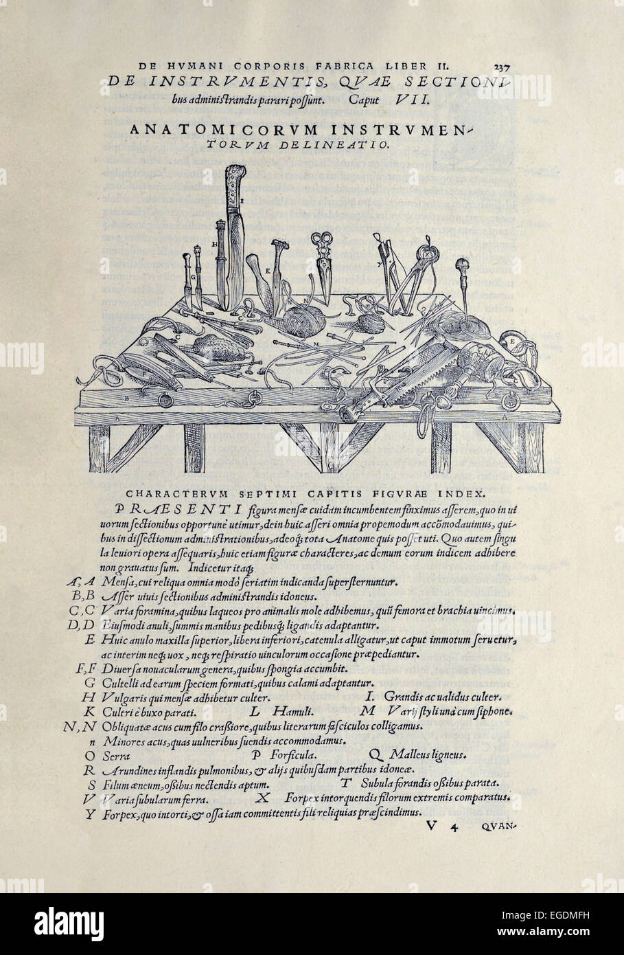 Los instrumentos quirúrgicos utilizados en la disección de cadáveres ...