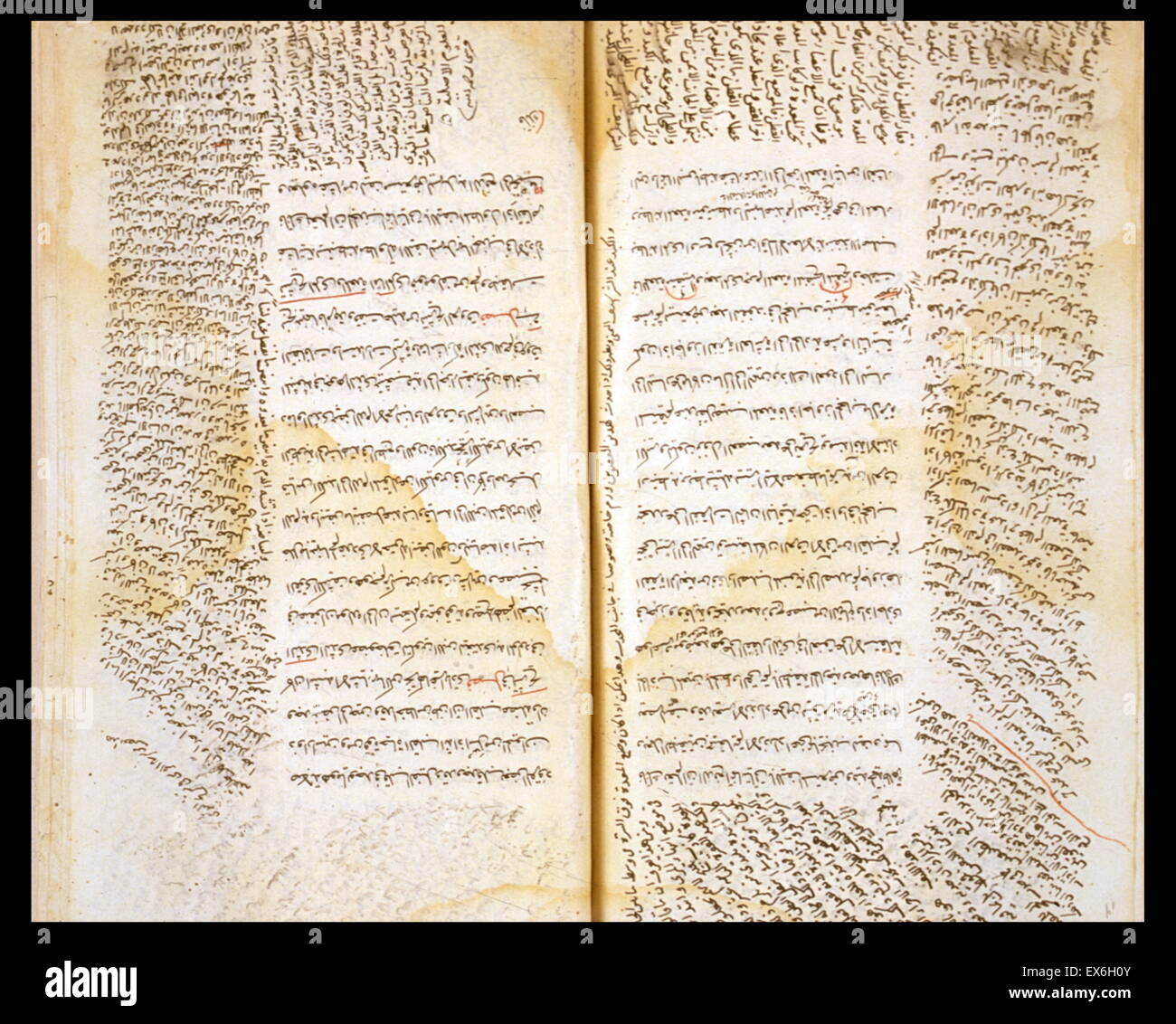El texto central consta de las secciones anatómicas del Canon de la ...
