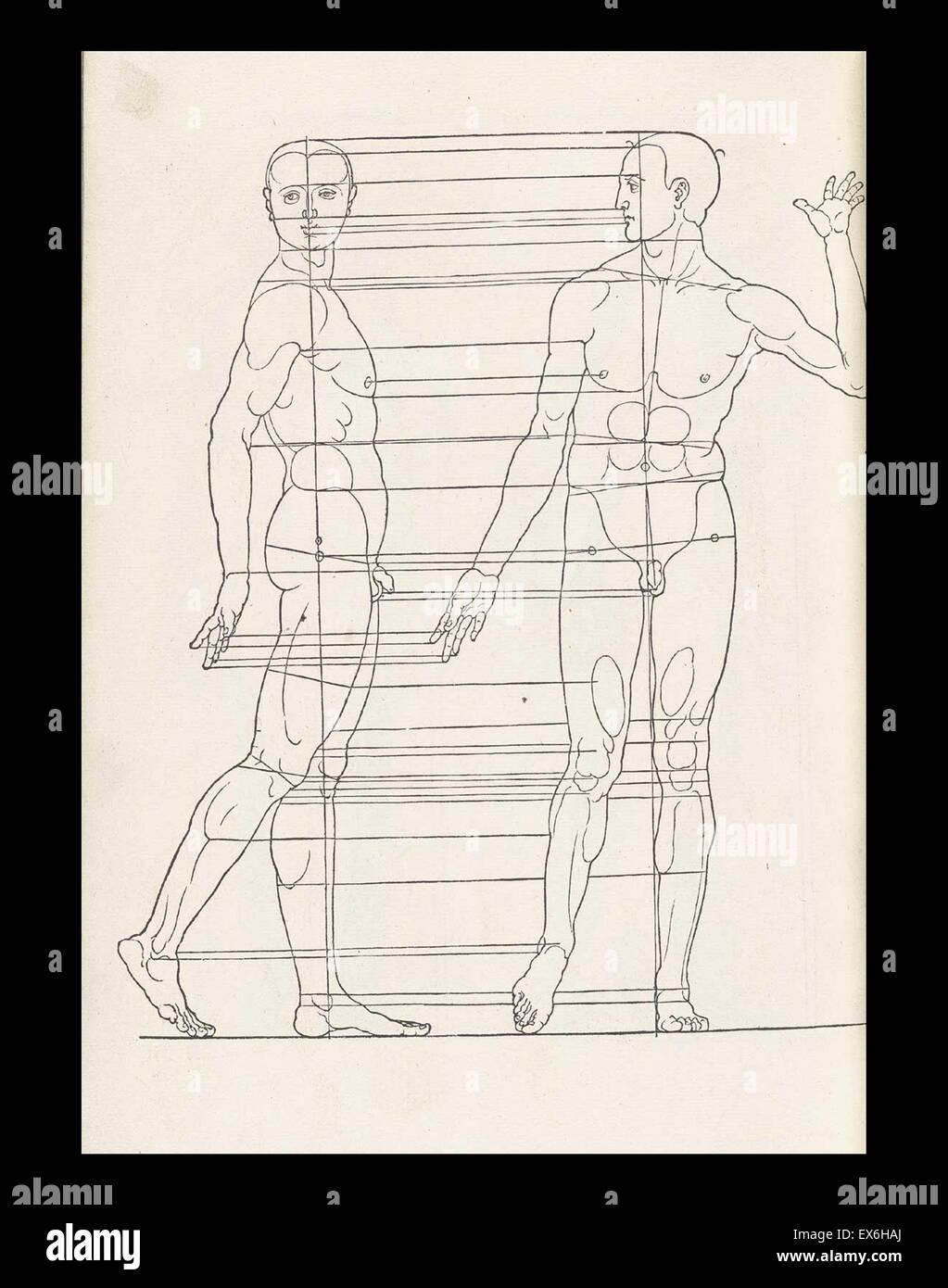 La ilustración anatómica desde \