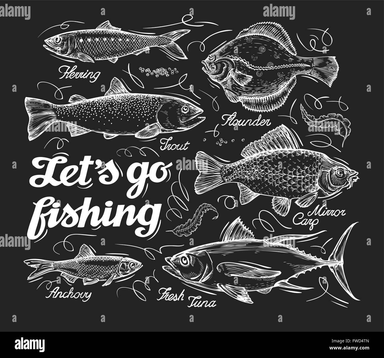 La pesca. Croquis dibujados a mano de pescado, arenque, trucha ...