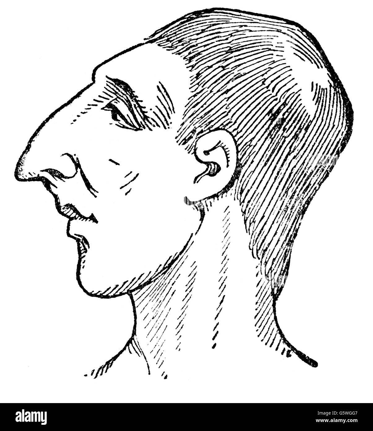 La medicina, la anatomía, la fisonomía, la cara y la cabeza de un ...