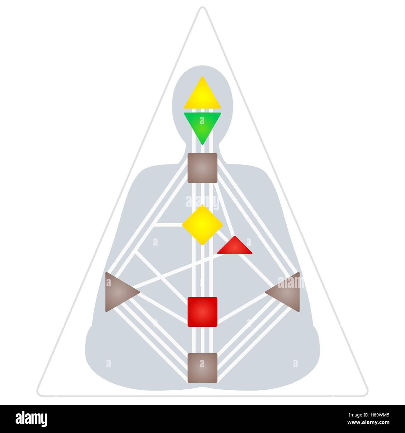 Diseño plano vector colorido diseño gráfico del cuerpo humano ...