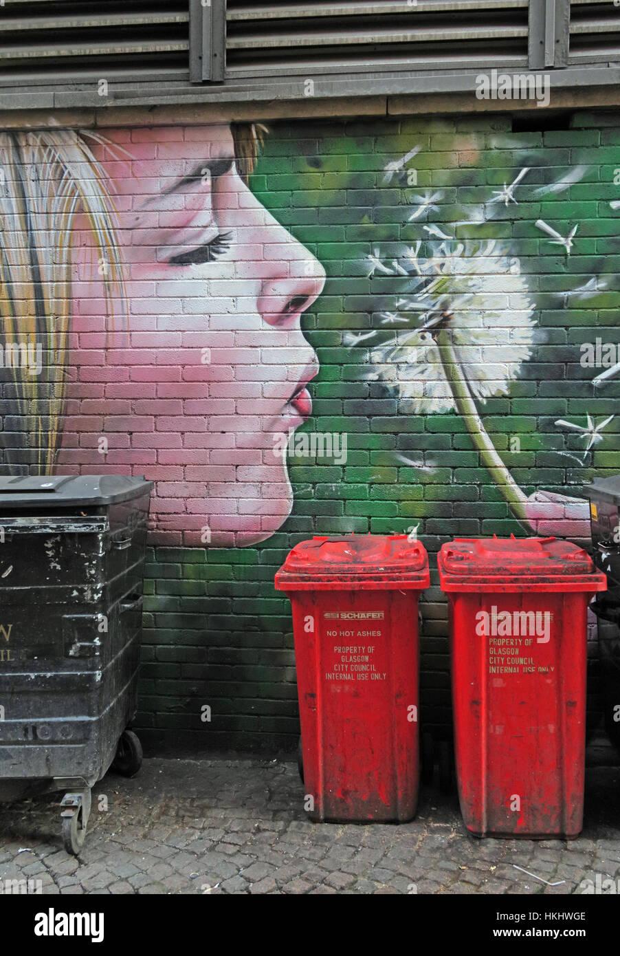 waste,Flower,dandelion,red,red
