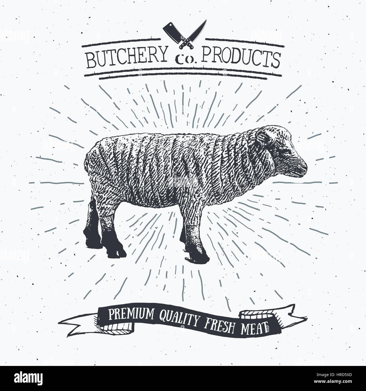 Butcher Shop vintage emblema de la carne de cordero, productos ...