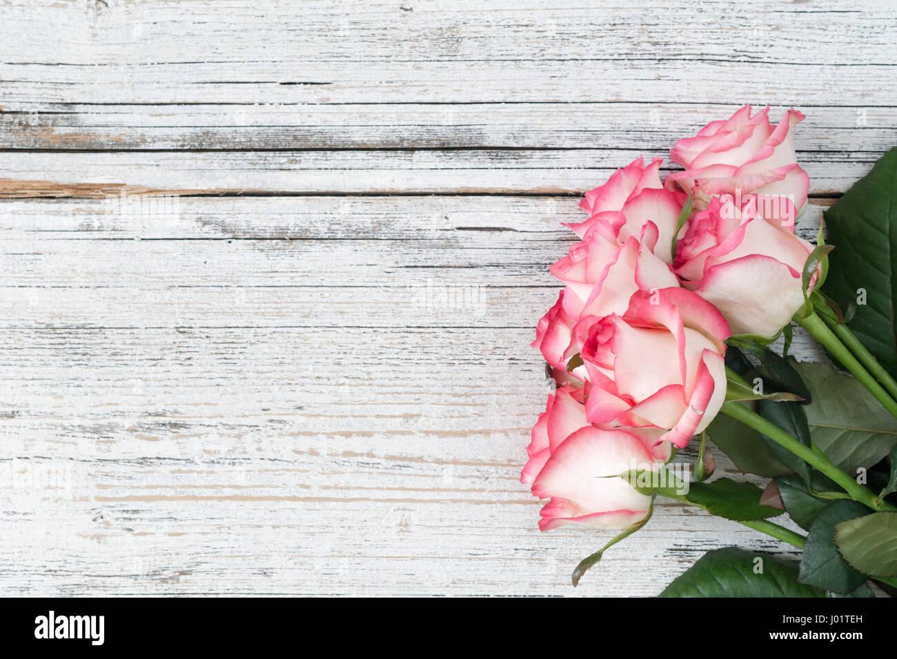 rosas rosas sobre fondo blanco de madera vintage vista superior