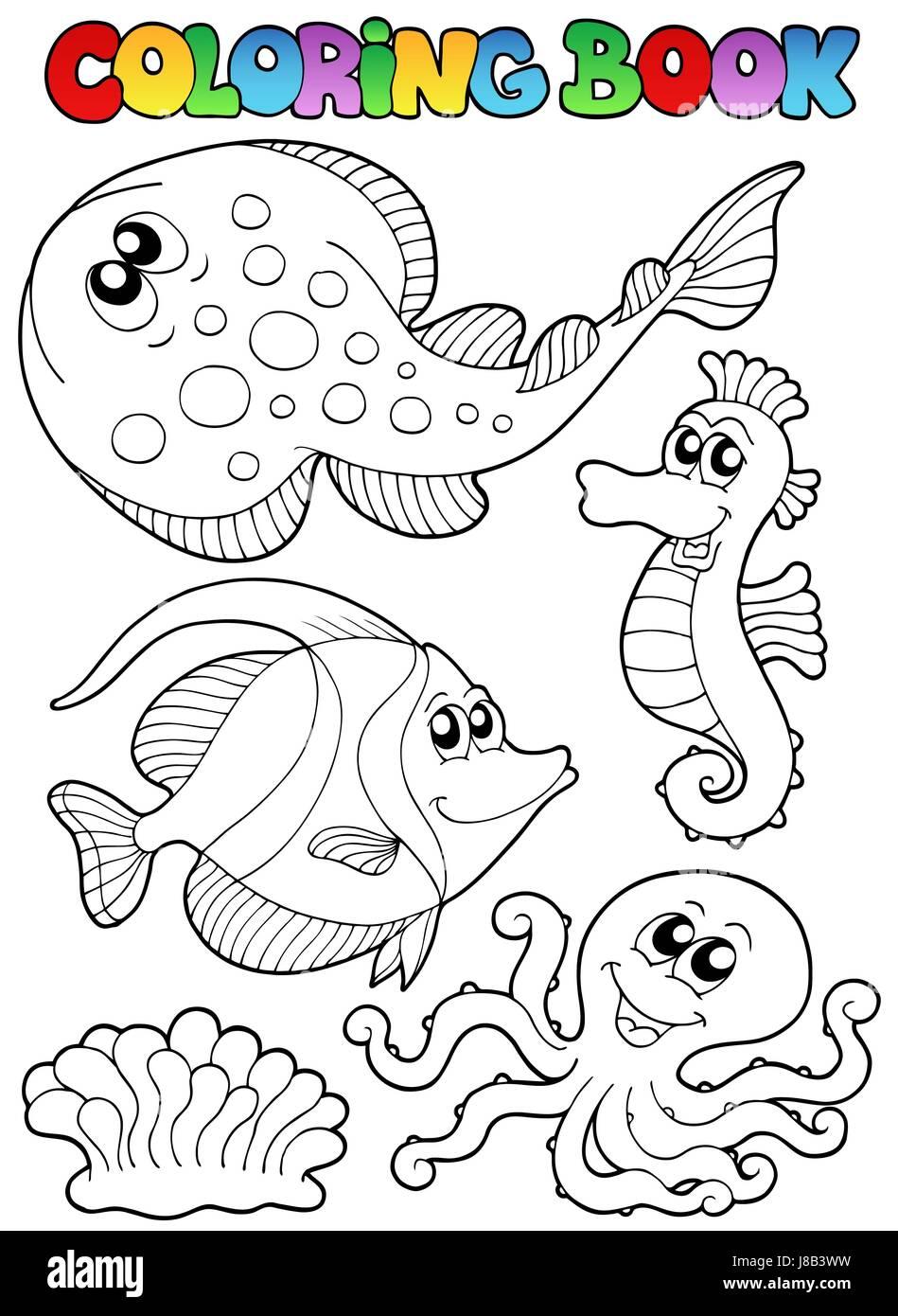 Color, animal, animales, peces, pintura, pintada, la coloración, el ...