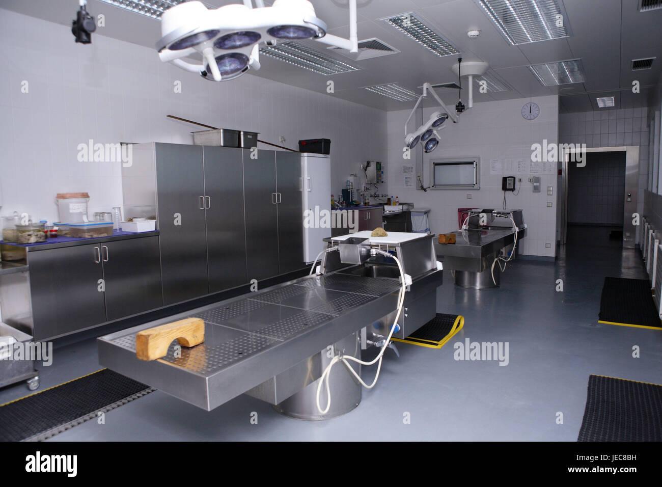 Hospital, departamento de anatomía patológica-, Prosektur, disecados ...