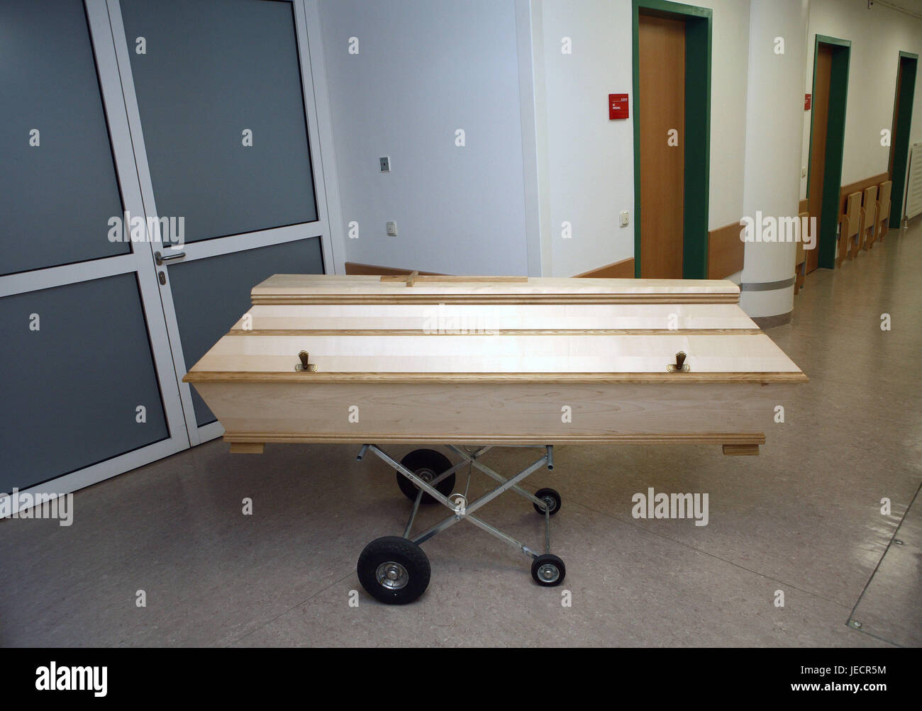 Hospital, departamento de anatomía patológica-, Prosektur, hall ...