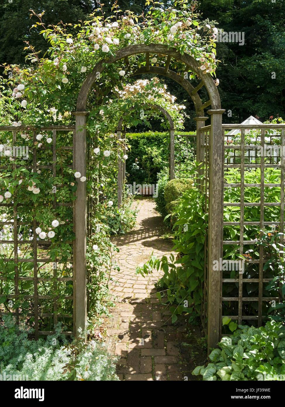 Arcos De Madera Recubiertos Redonda Rosa Y Enrejados En Camino Del - Arcos-de-jardin