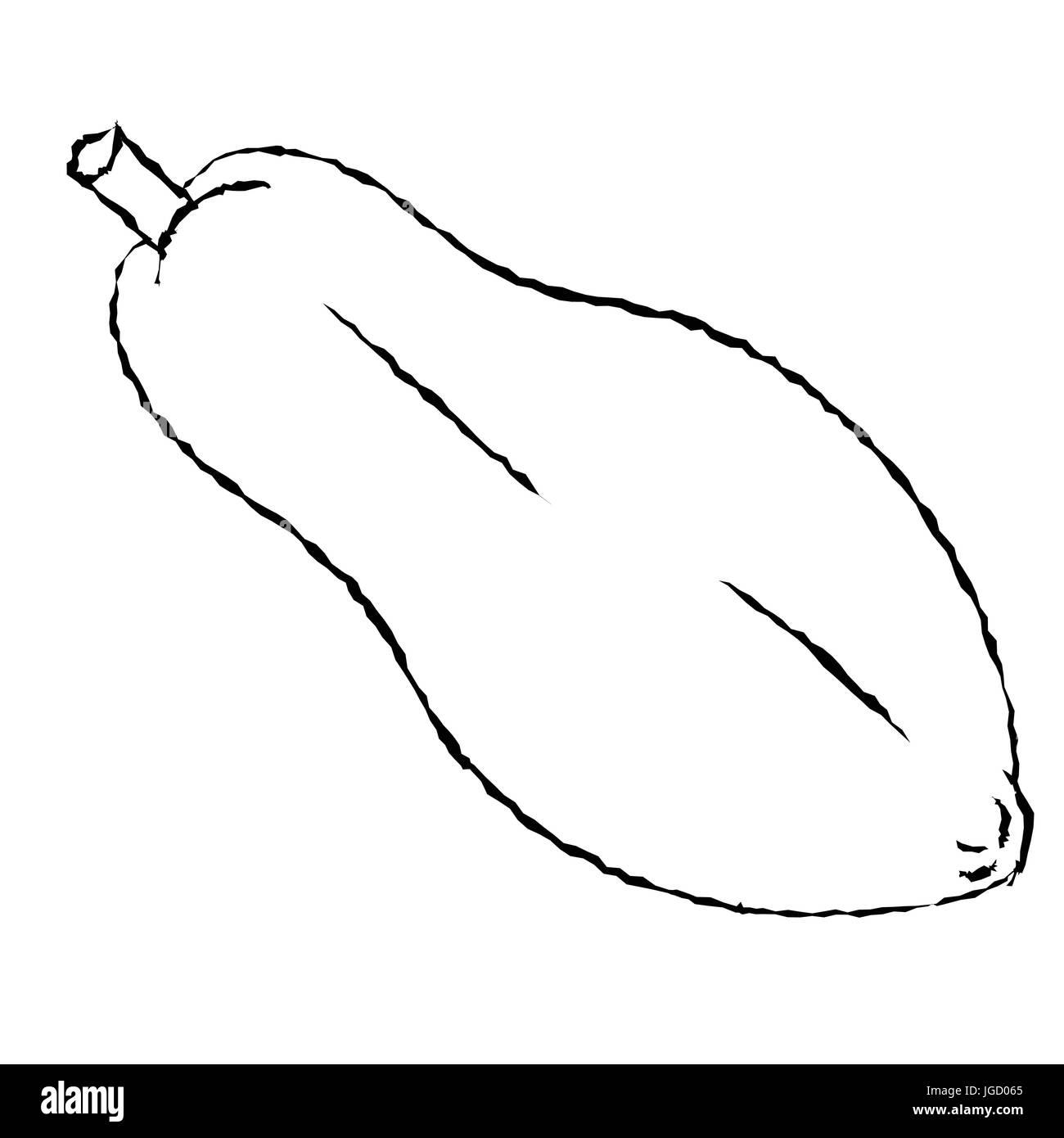 Croquis dibujados a mano de papaya aislados, en blanco y negro para ...