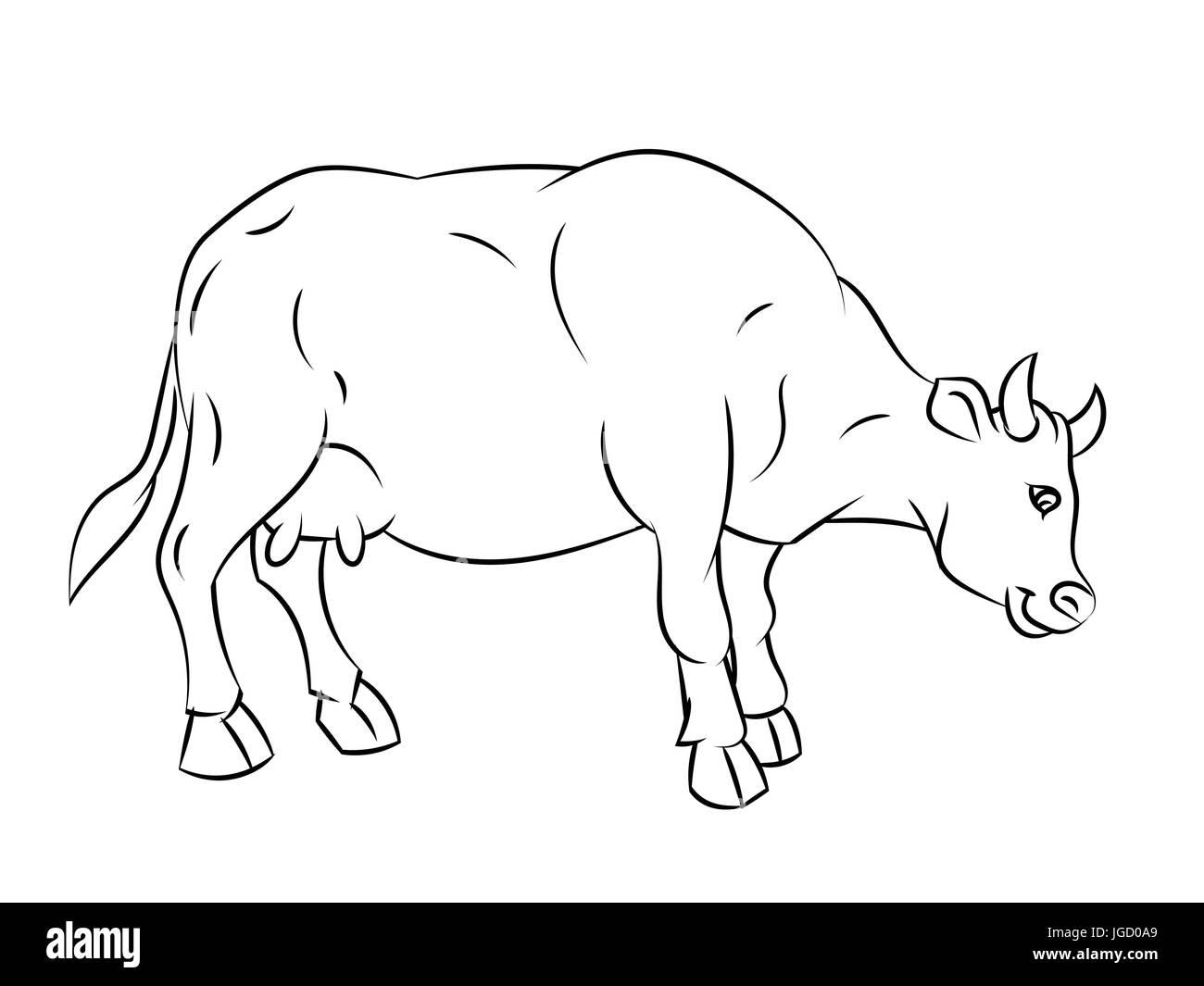 Croquis dibujados a mano de vaca aislados, en blanco y negro para ...