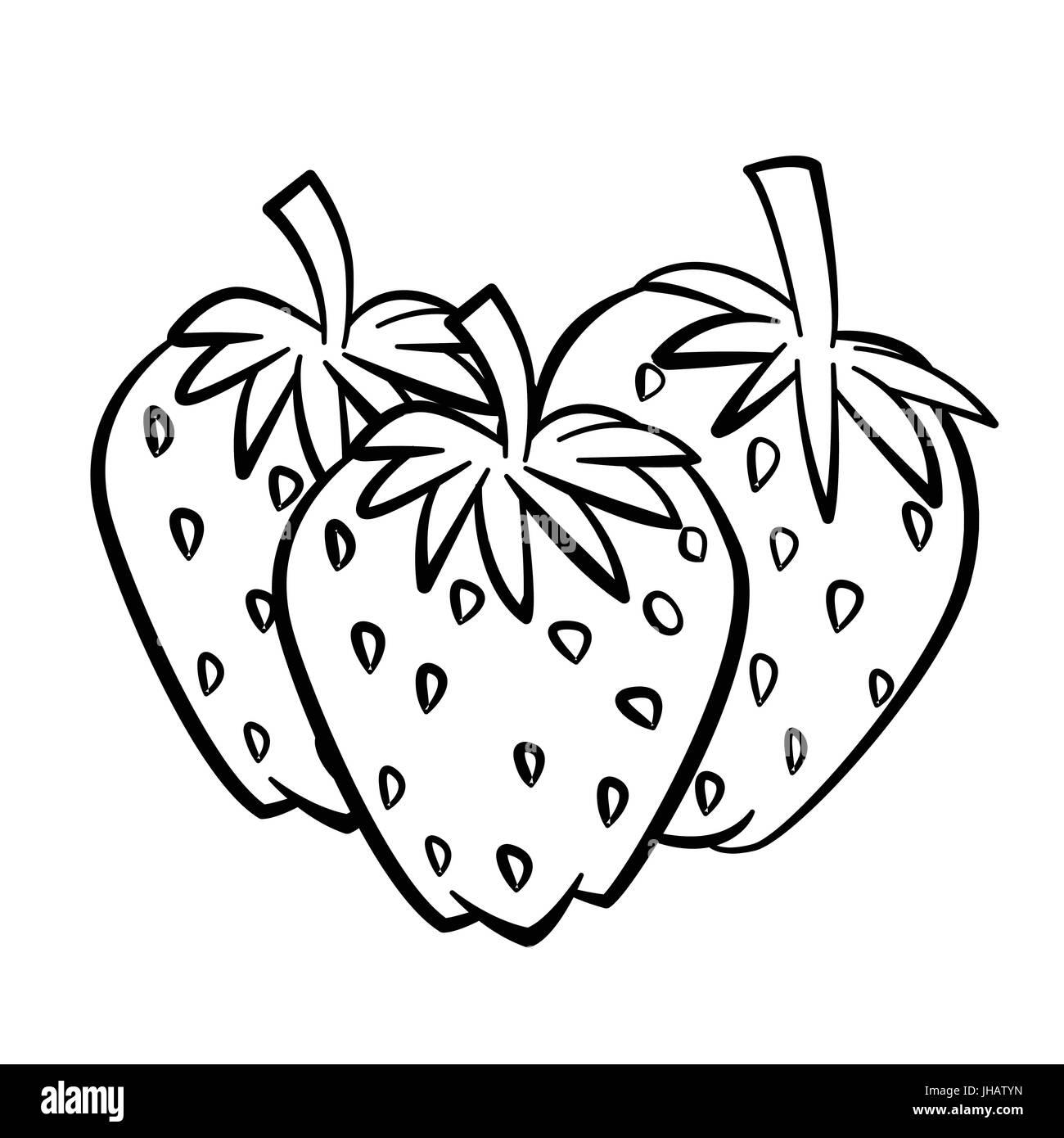 Croquis dibujados a mano de fresa con rama y hoja aislados, en ...