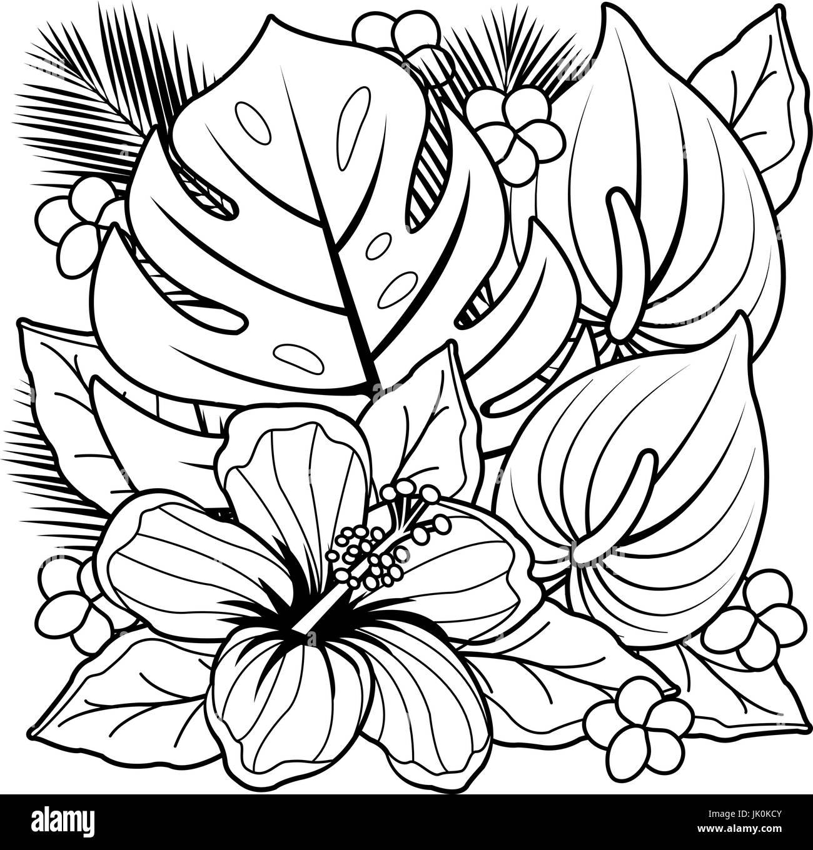 Plantas tropicales y flores de hibisco. Libro para colorear de ...