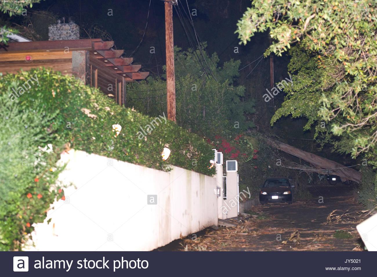 Eric Dane house, caída de árbol. \
