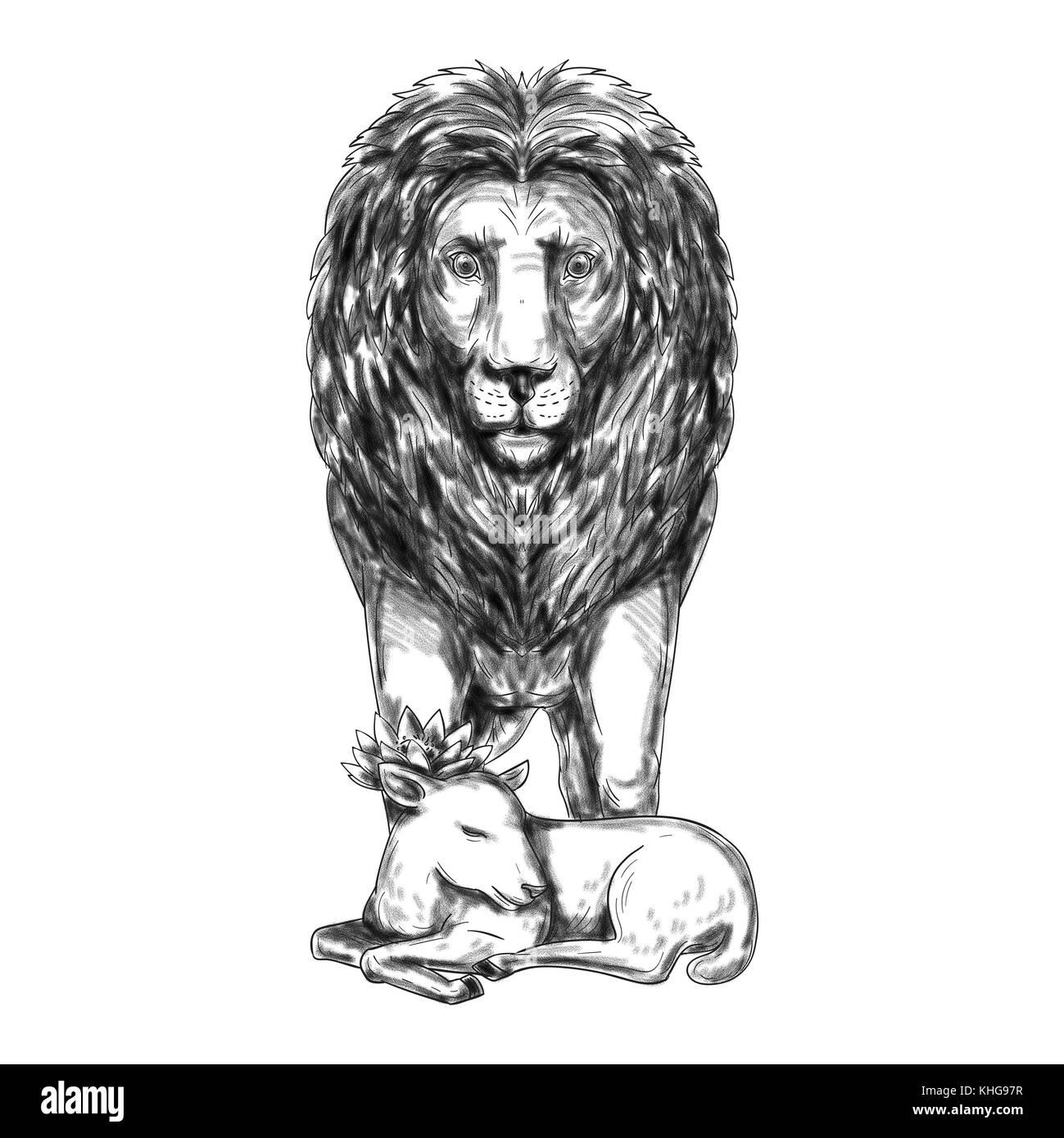 Ilustración estilo tatuaje de un león de pie y custodia durmiendo ...