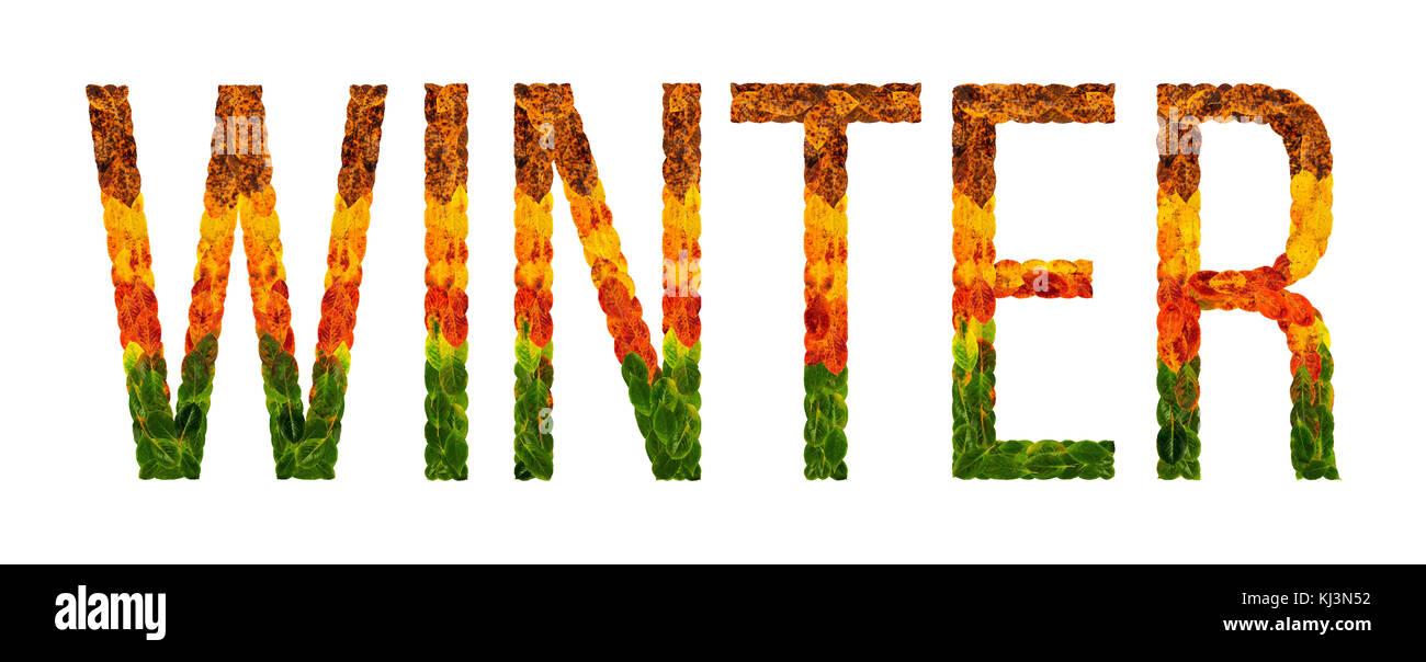 Palabra escrita de invierno con hojas blancas antecedentes aislados ...