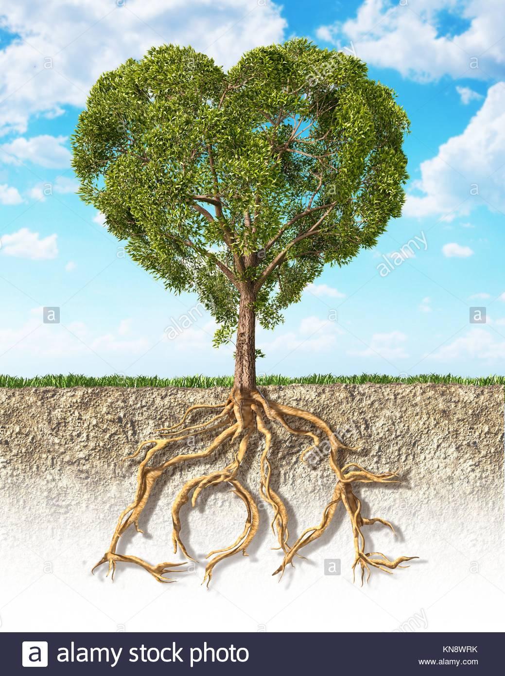 Sección Transversal Del Suelo Mostrando Un árbol Con Forma De