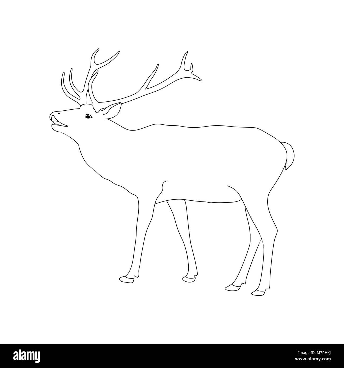 Libro para colorear de vectores página con renos. Esquema ...