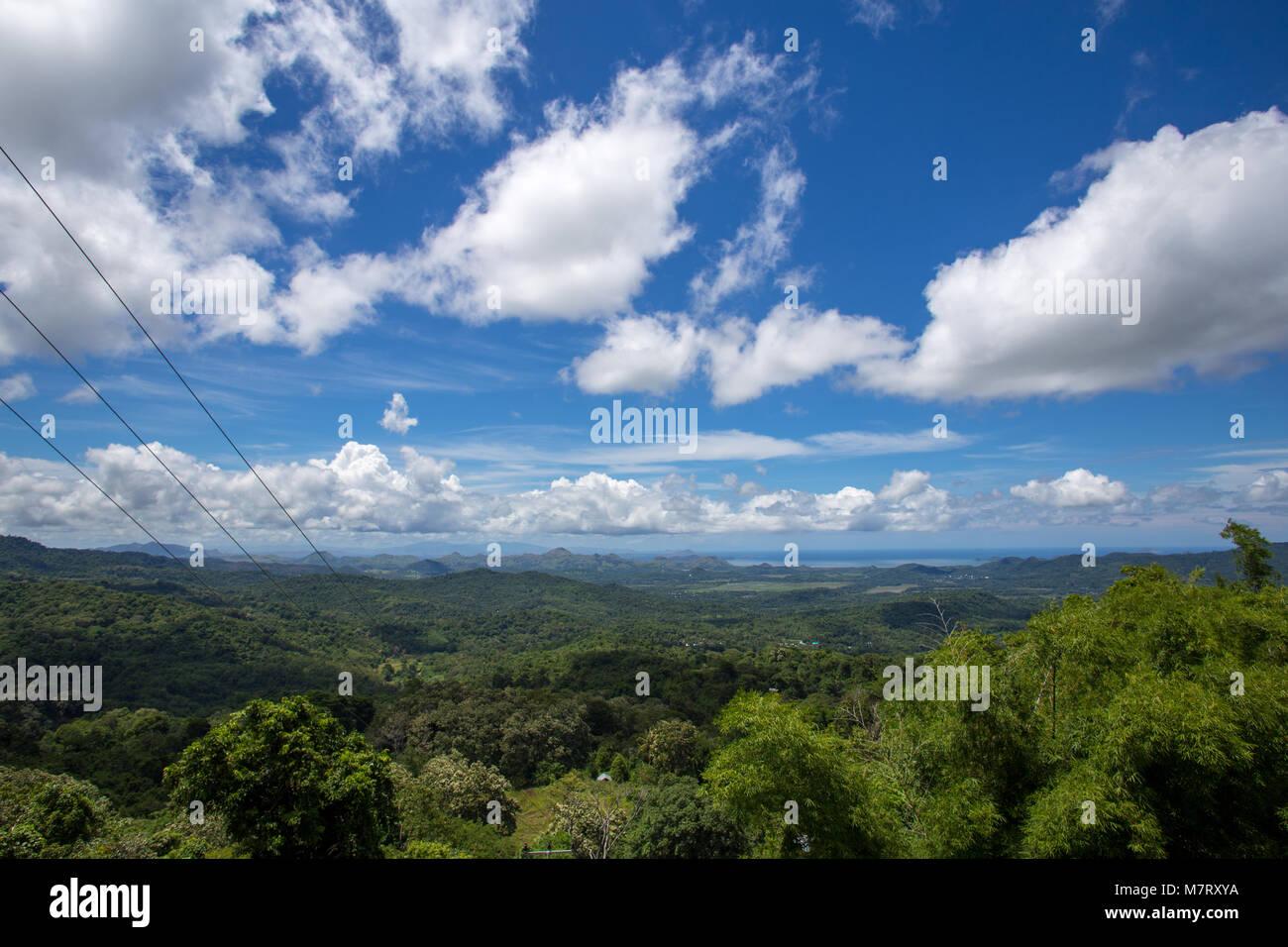 Trópico Verde bosque montañoso paisaje selvático paisaje hasta el ...