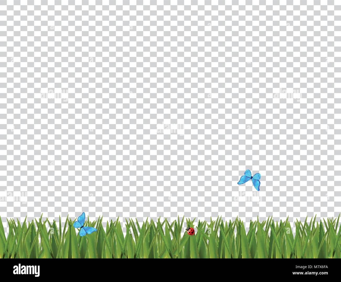 Verde césped realista frontera con mariquita y mariposas azules ...