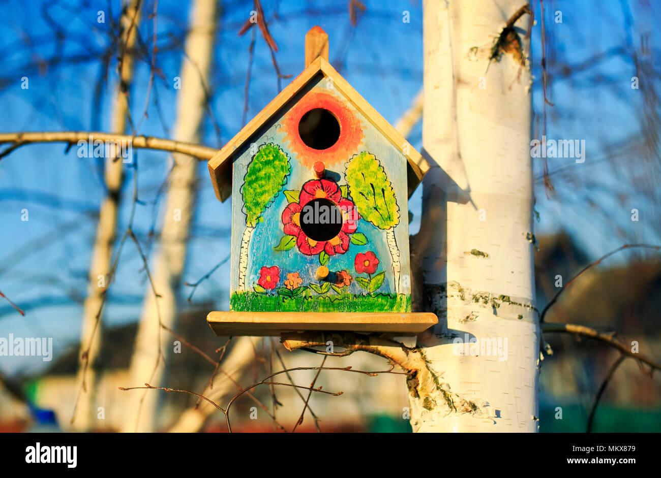 Hermosa casa de pájaros pintados casita para aves colgando de abedul en  spring garden 5803389a512