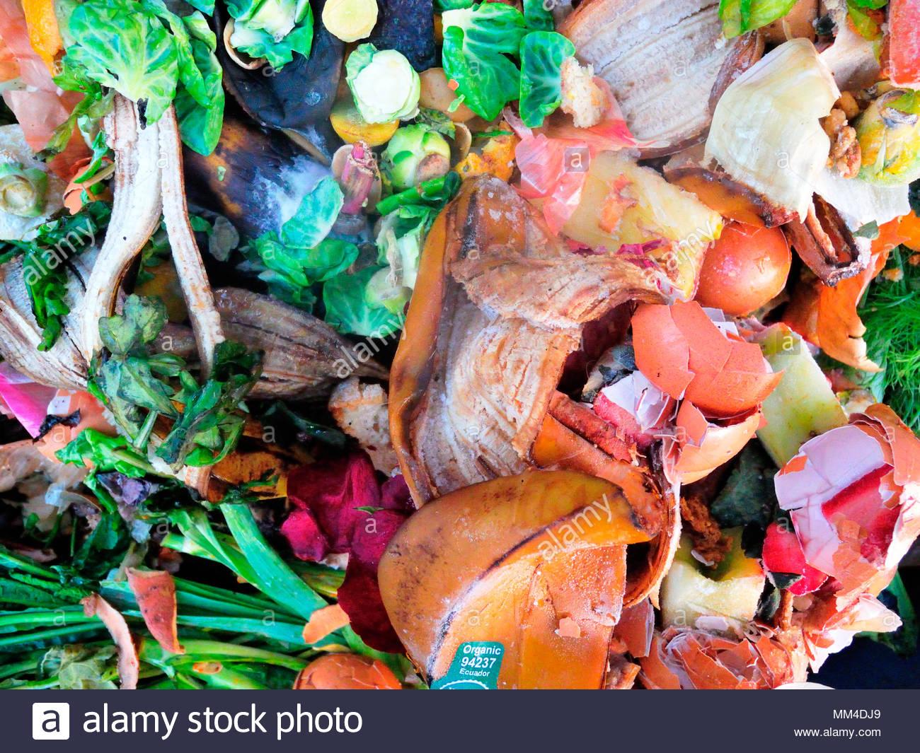 Perfecto Bin Cocina De Compost Cómo Utilizar Embellecimiento - Ideas ...