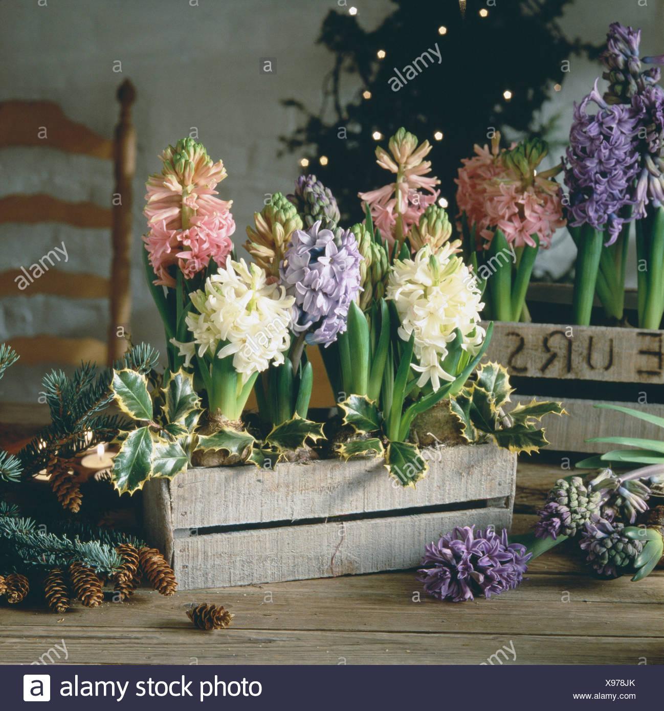 Magnífico Lilly Arte De Uñas Colección - Ideas de Diseño de Arte de ...