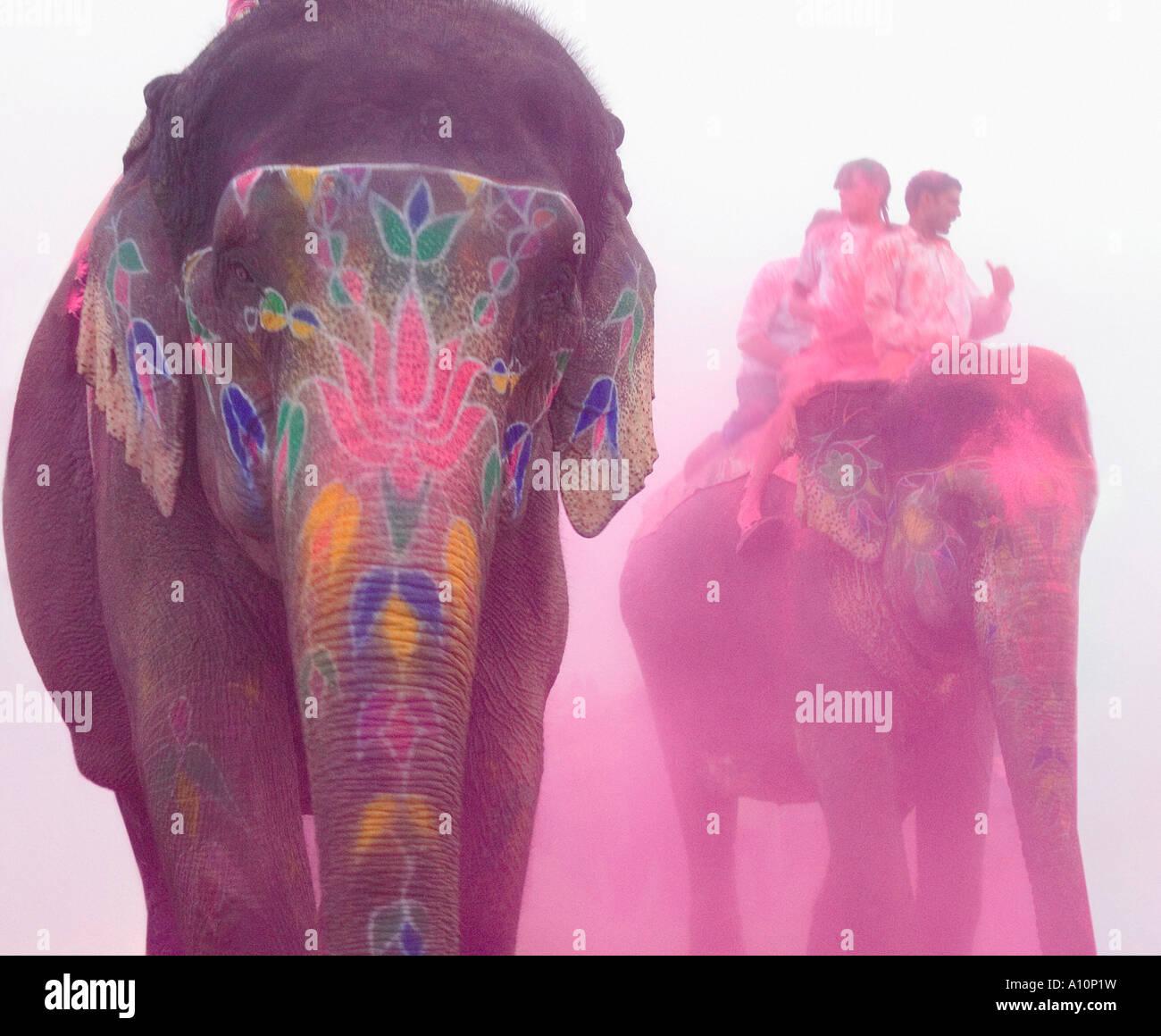 Trois éléphants à un festival de l'éléphant, Jaipur, Rajasthan, Inde Photo Stock