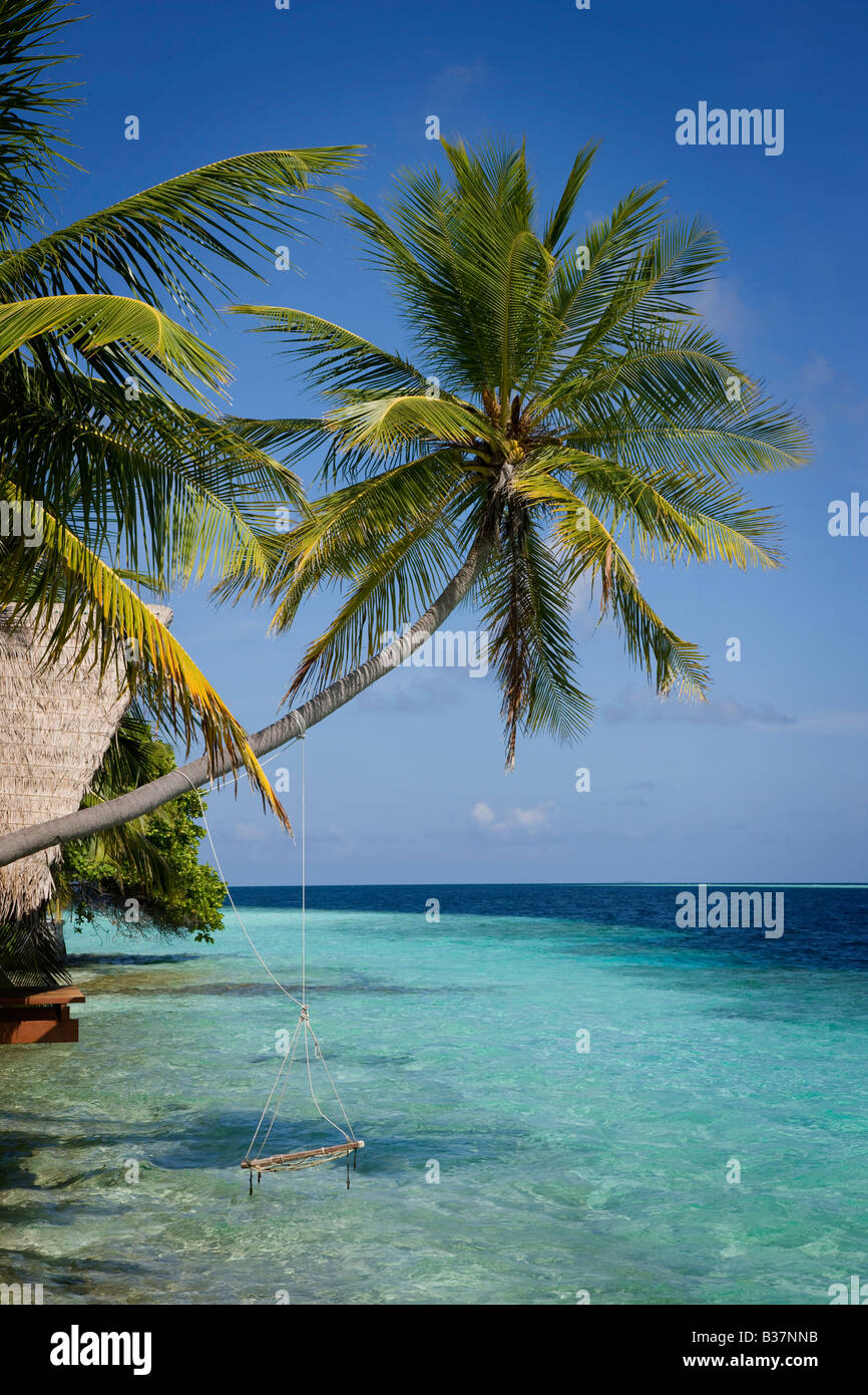 Rope swing sur South Ari Atoll Maldives près de l'Inde Photo Stock