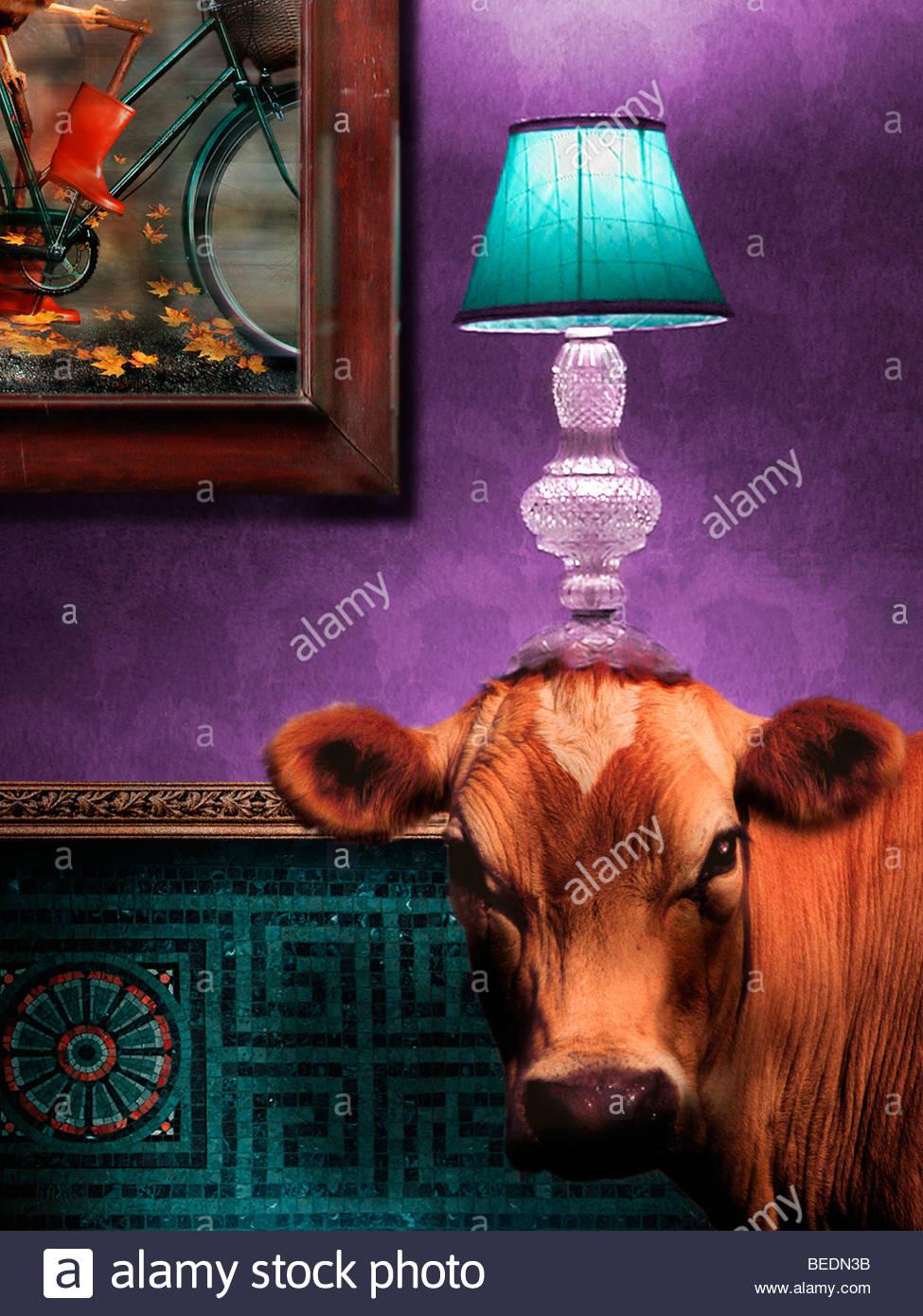 Vache dans un salon avec une lampe sur la tête Photo Stock