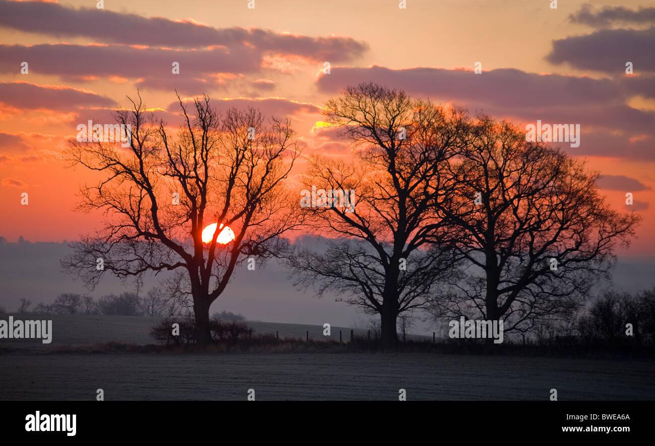 Soleil d'hiver s'élève de Misty Rother valley sur des collines boisées en rouge ciel avec Photo Stock