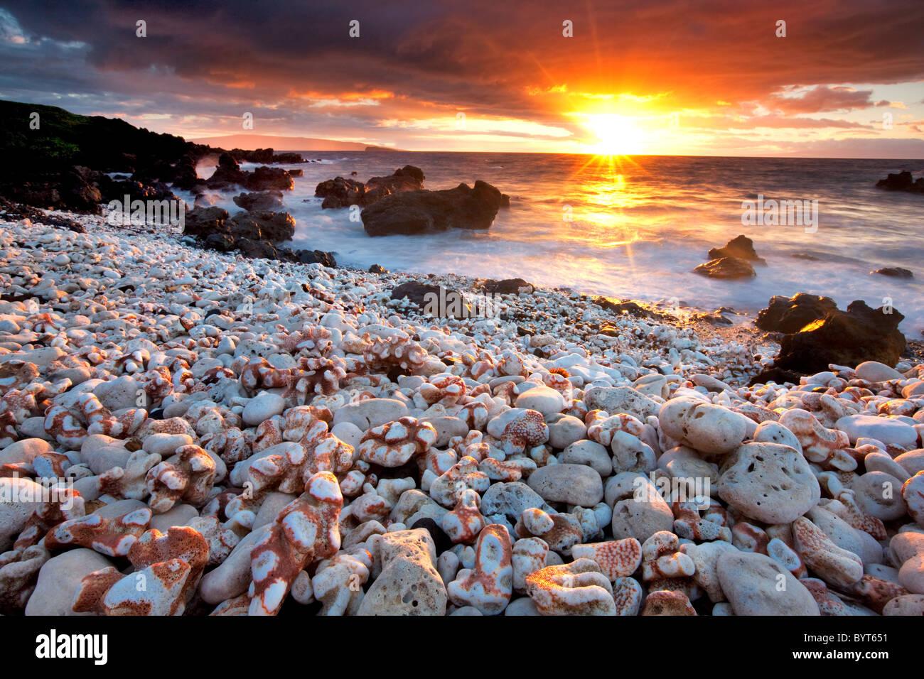 Coucher du soleil sur la plage avec corail. Maui, Hawaii. Photo Stock