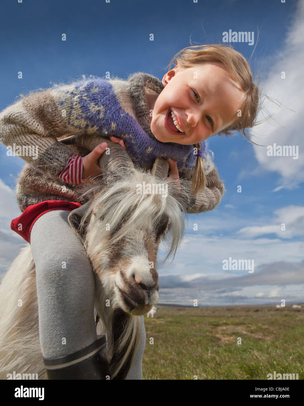 Fille avec chèvre, chèvre farm, Iceland Photo Stock