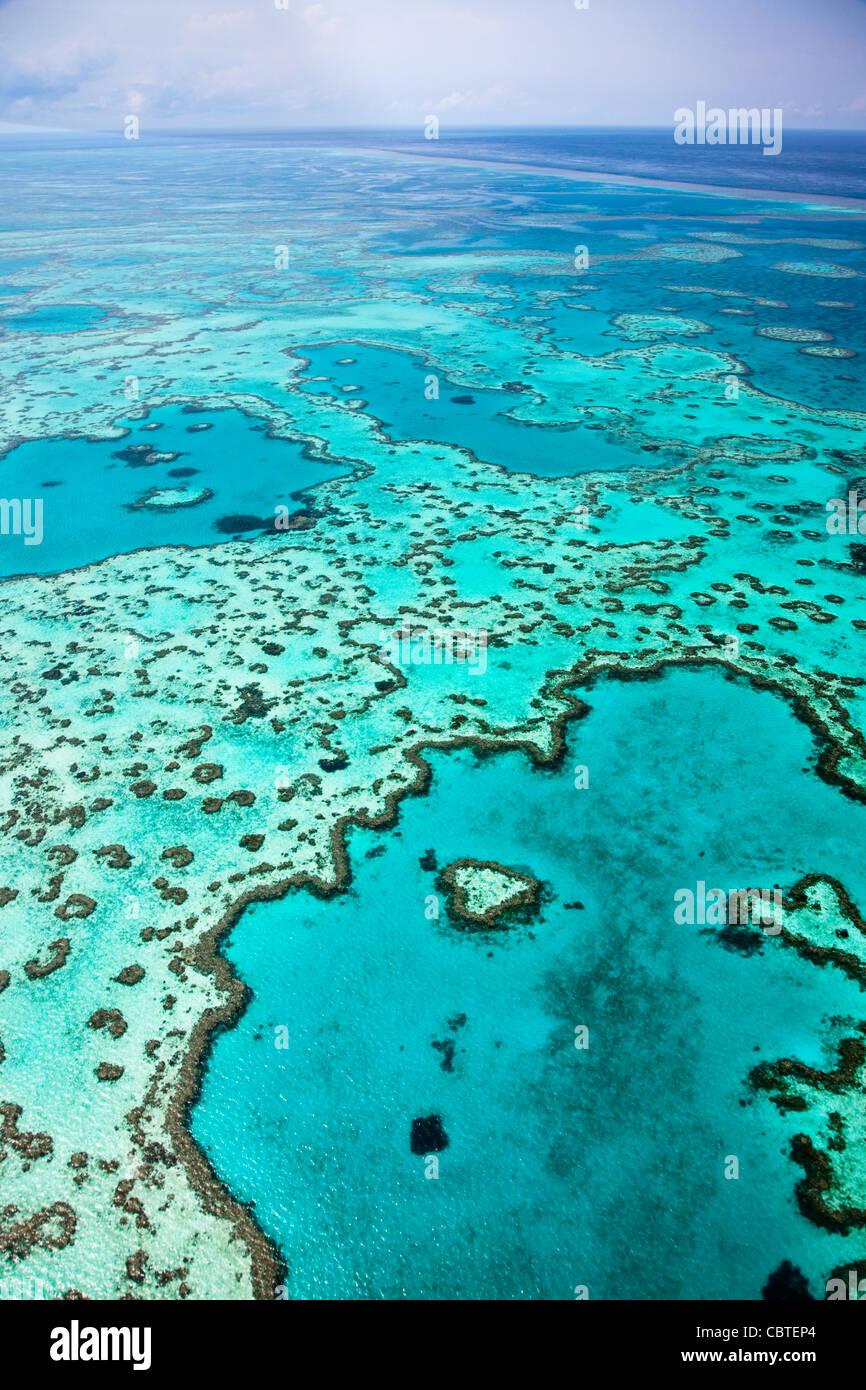 Vues aériennes de beau coeur de corail dans la spectaculaire Grande Barrière de Corail près de îles Photo Stock