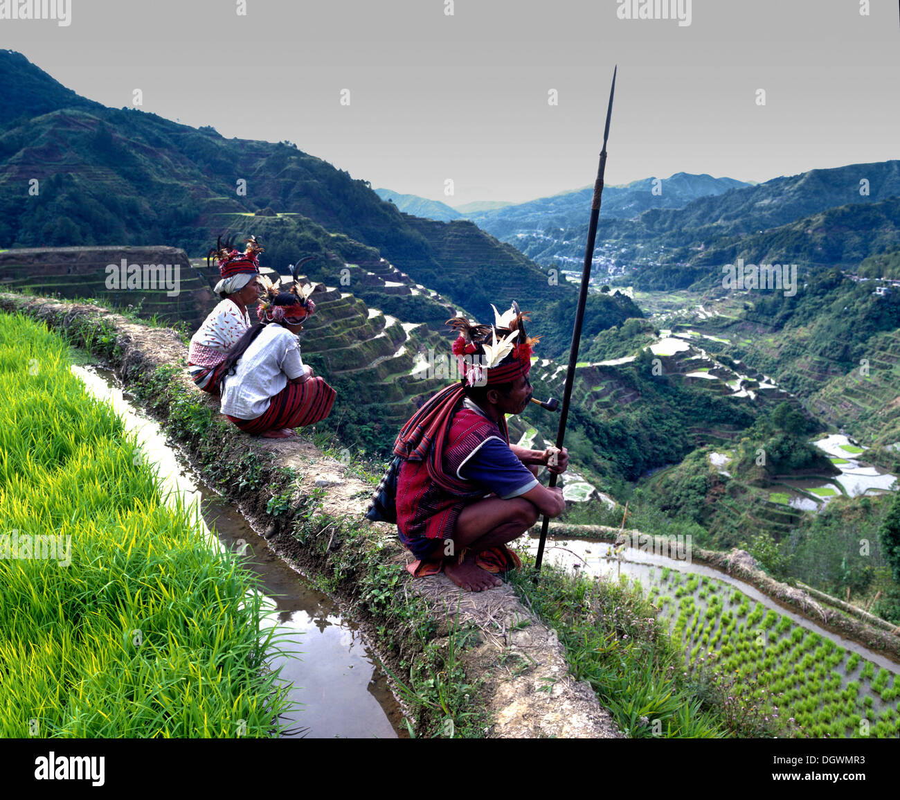 Les gens d'Ifugao, membres d'un groupe ethnique portant des costumes traditionnels, les terrasses de riz Photo Stock