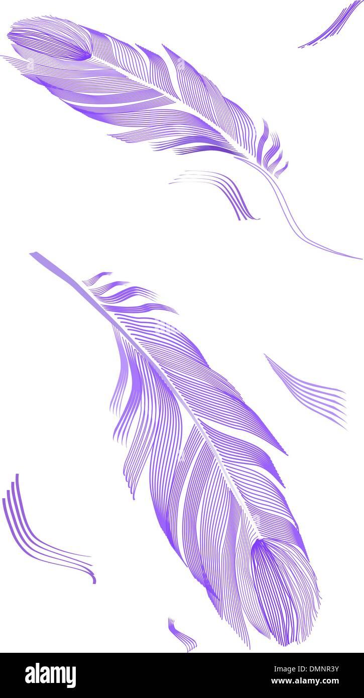 Plume d'oiseau de dessin Photo Stock