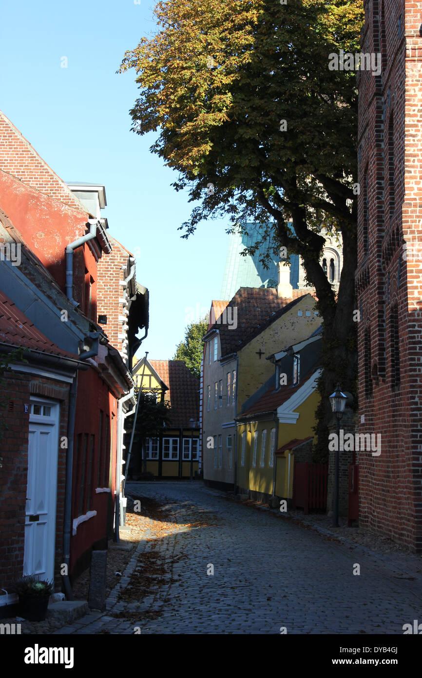où suis je? Martin 17 Novembre trouvé par Martine Regardez-une-petite-rue-de-la-vieille-ville-de-la-ville-medievale-de-ribe-danemark-europe-le-plus-ancien-village-de-scandinavie-dyb4gj