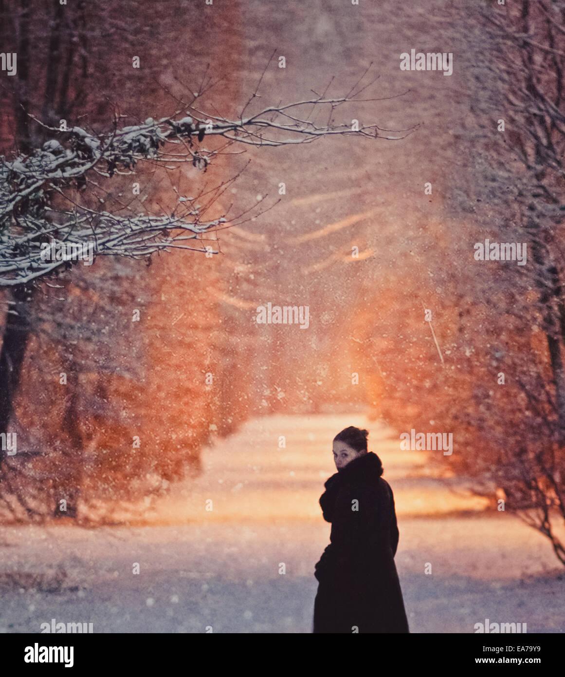 Une promenade dans un parc enneigé Photo Stock