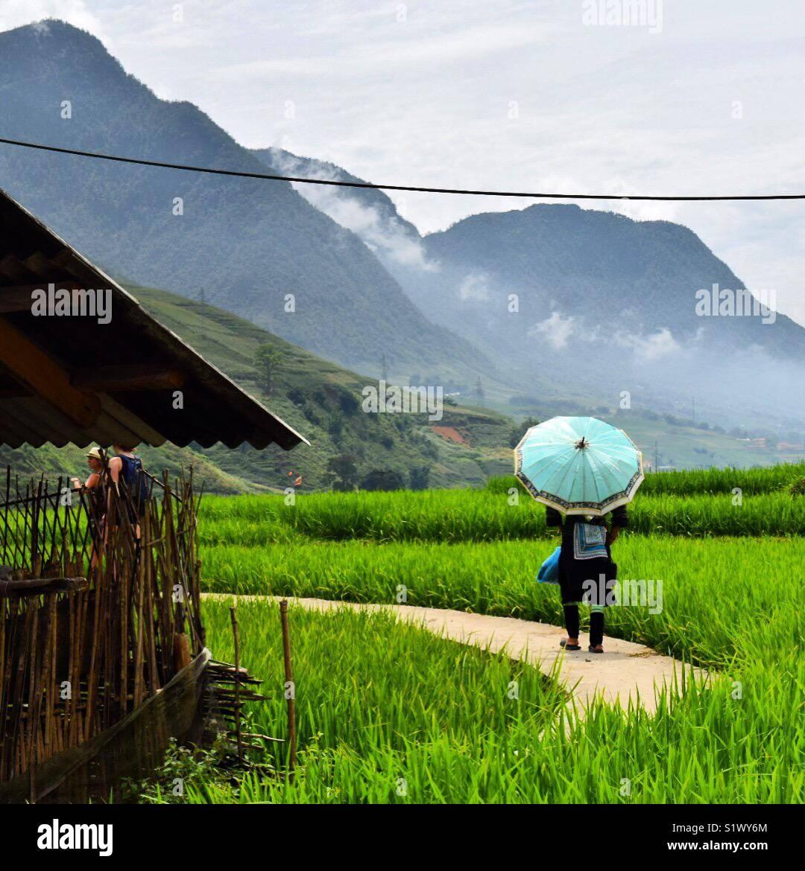 La belle vallée de Sapa, Vietnam Photo Stock