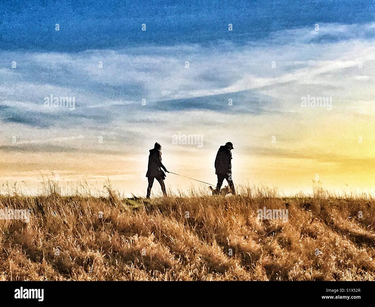 Promener le chien dans la campagne britannique Photo Stock