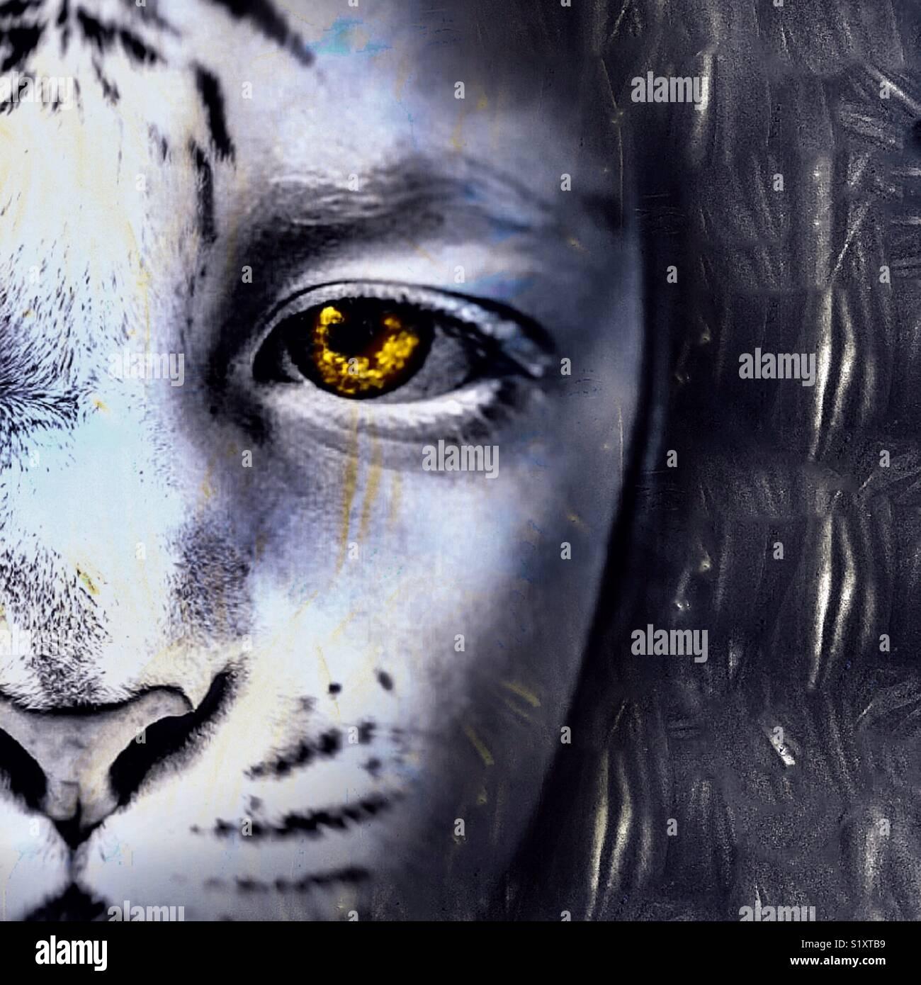 Fille de Lion Photo Stock