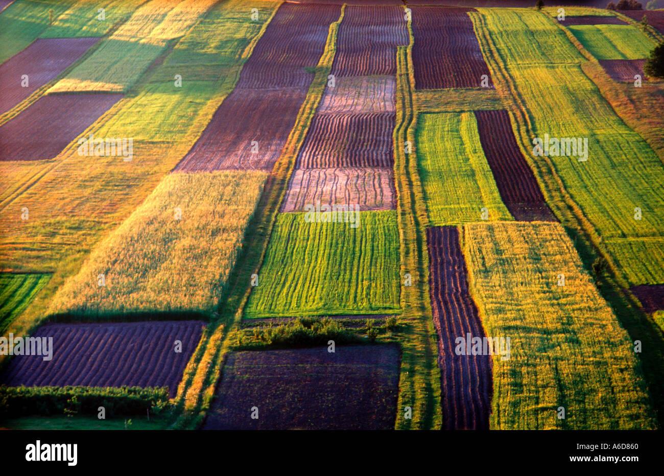 Azienda agricola biologica a sud-est della Polonia Immagini Stock