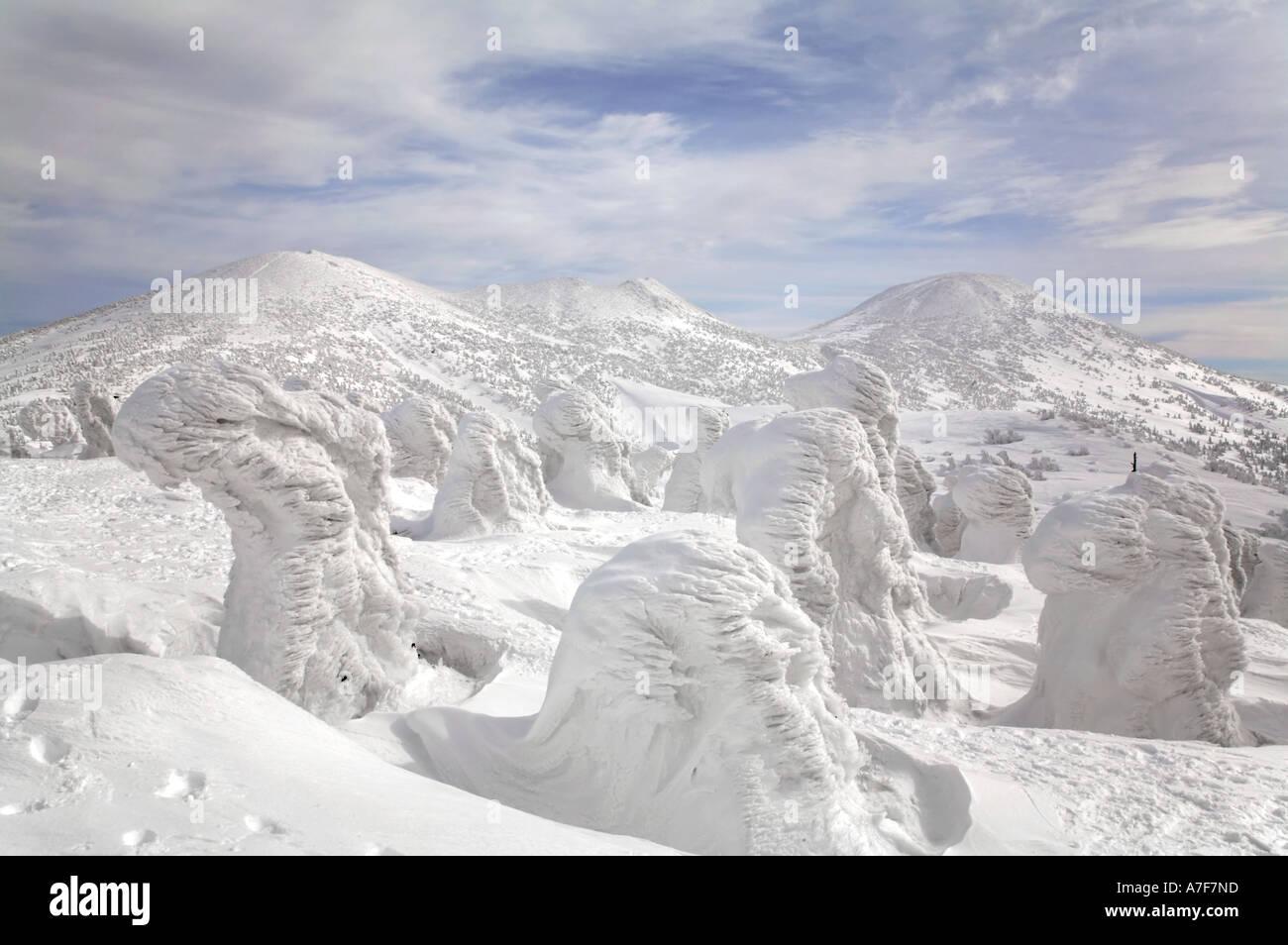 Snow mostri - alberi con neve congelate su di loro in inverno il Monte Hakkoda Giappone Immagini Stock