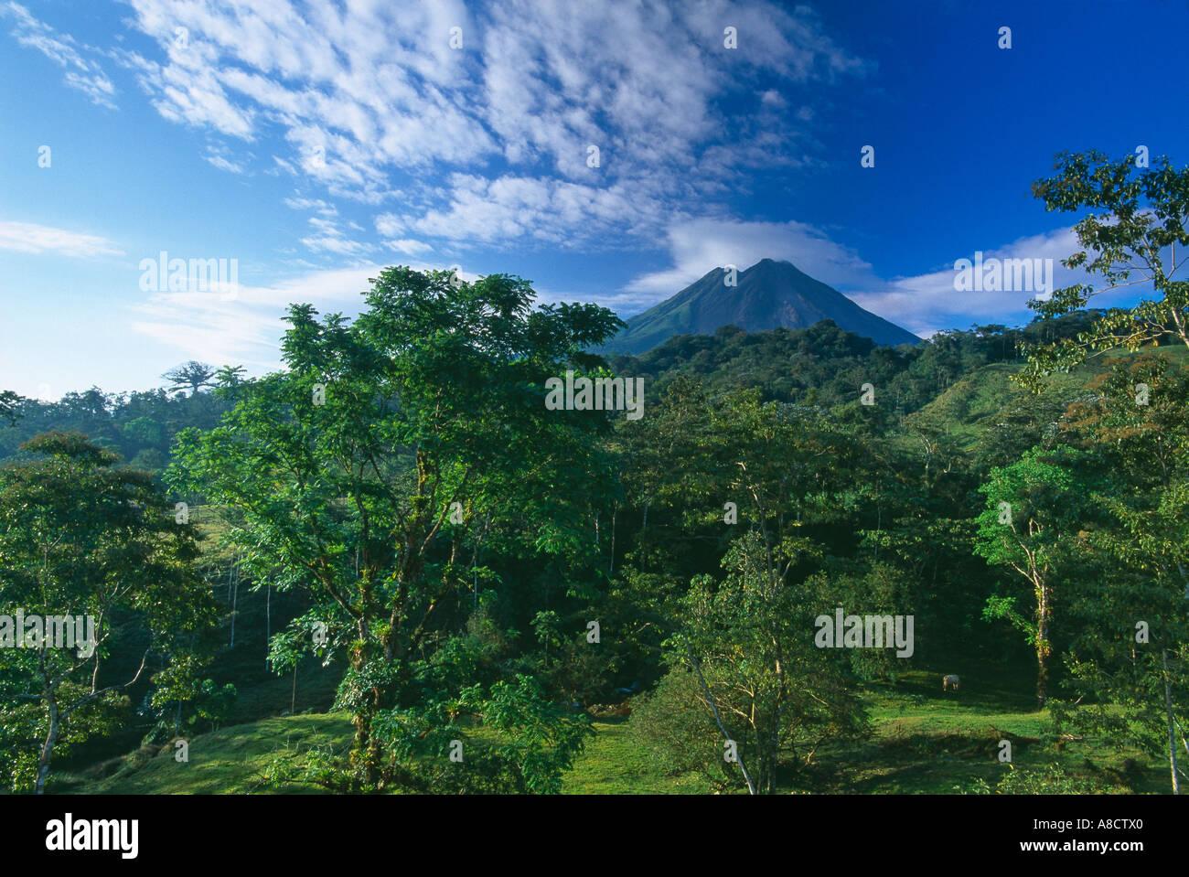 Vulcano Arenal Zona Norte Costa Rica Immagini Stock