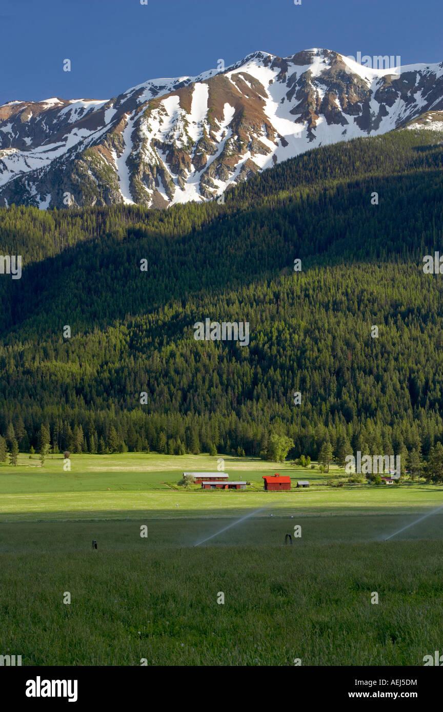 Terreni agricoli vicino a Giuseppe con fienile e montagne Wallowa Oregon Immagini Stock