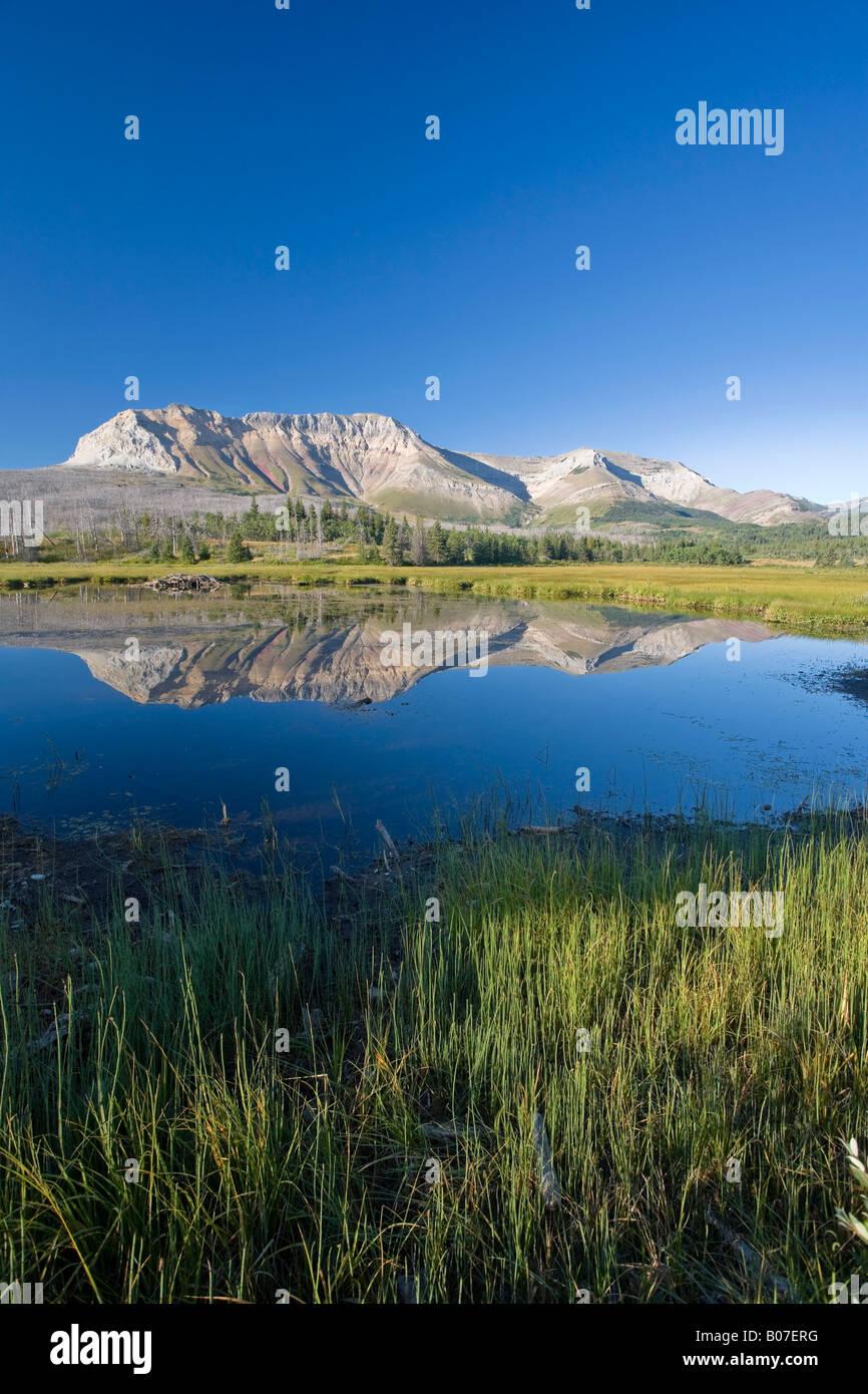 Divano montagna, Parco Nazionale dei laghi di Waterton, Alberta, Canada Immagini Stock
