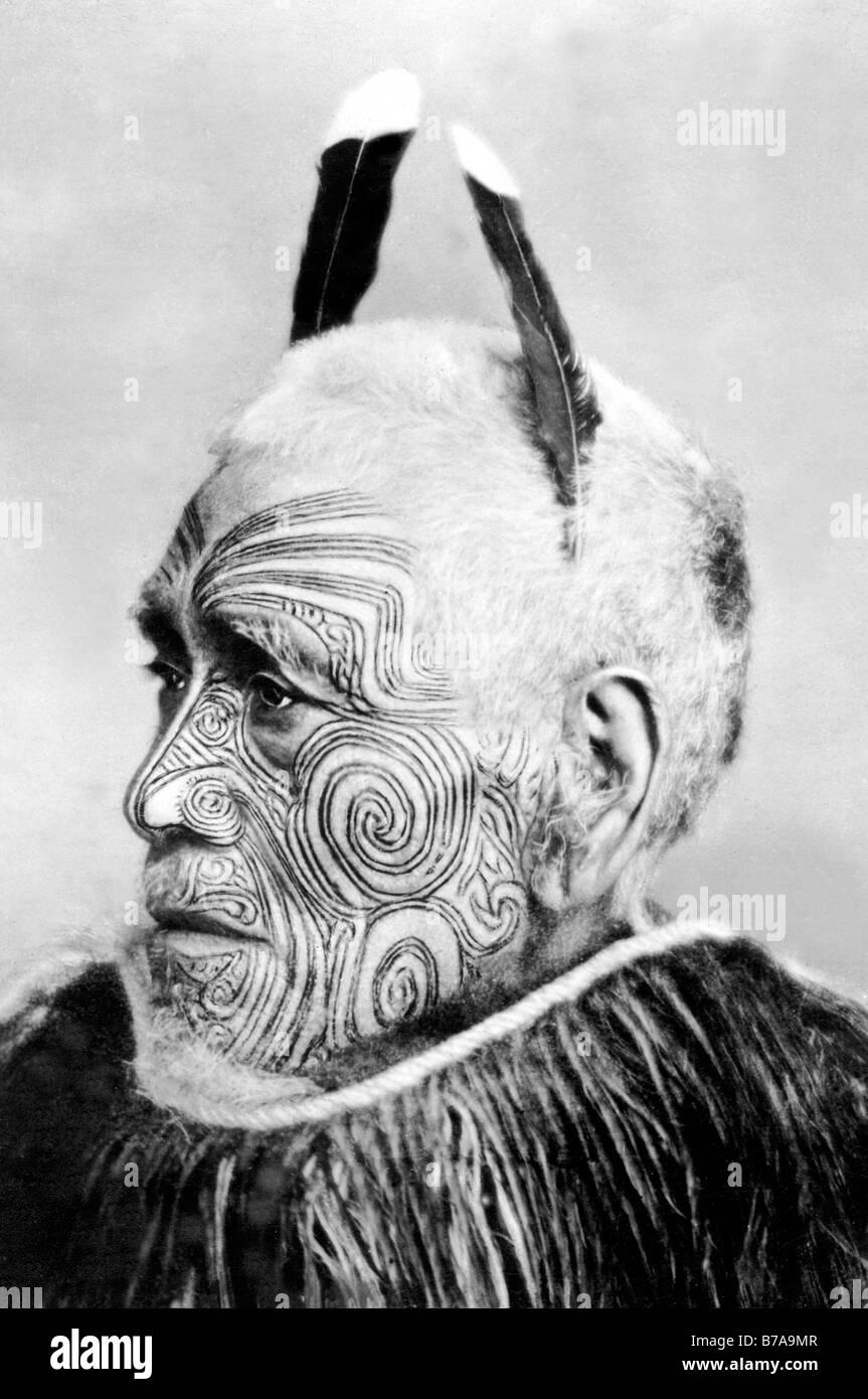 Foto storiche, tatuato capo tribù, Maori, ca. 1900 Immagini Stock